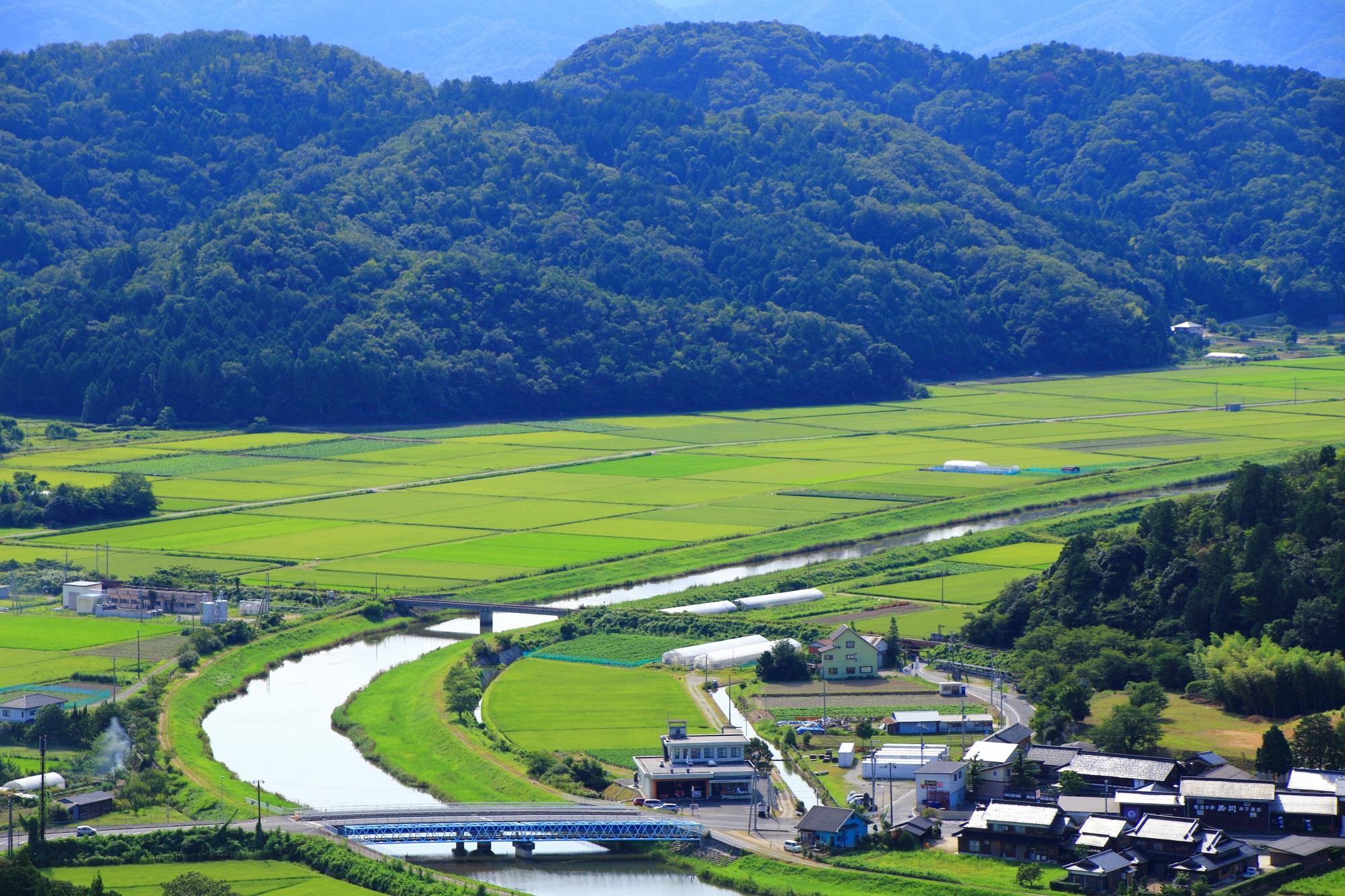 paddy field Kumihama-cho Kyotango kyoto,Japan