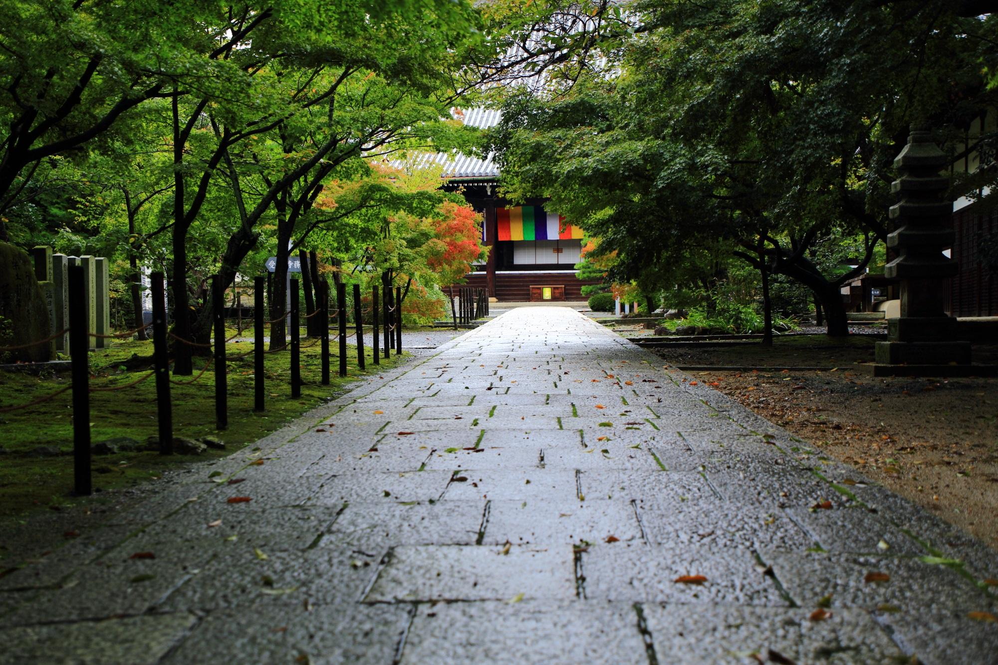 光明寺の本堂前の雨に濡れた参道