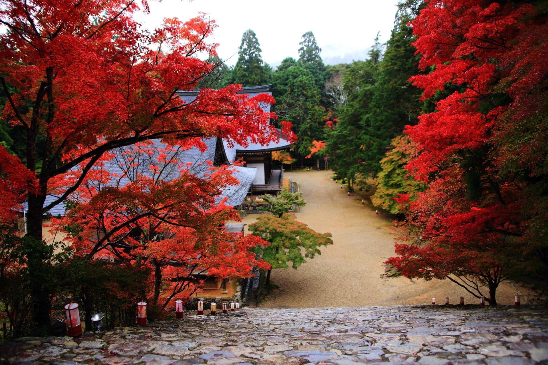 神護寺の金堂前から眺めた五大堂と毘沙門堂の紅葉
