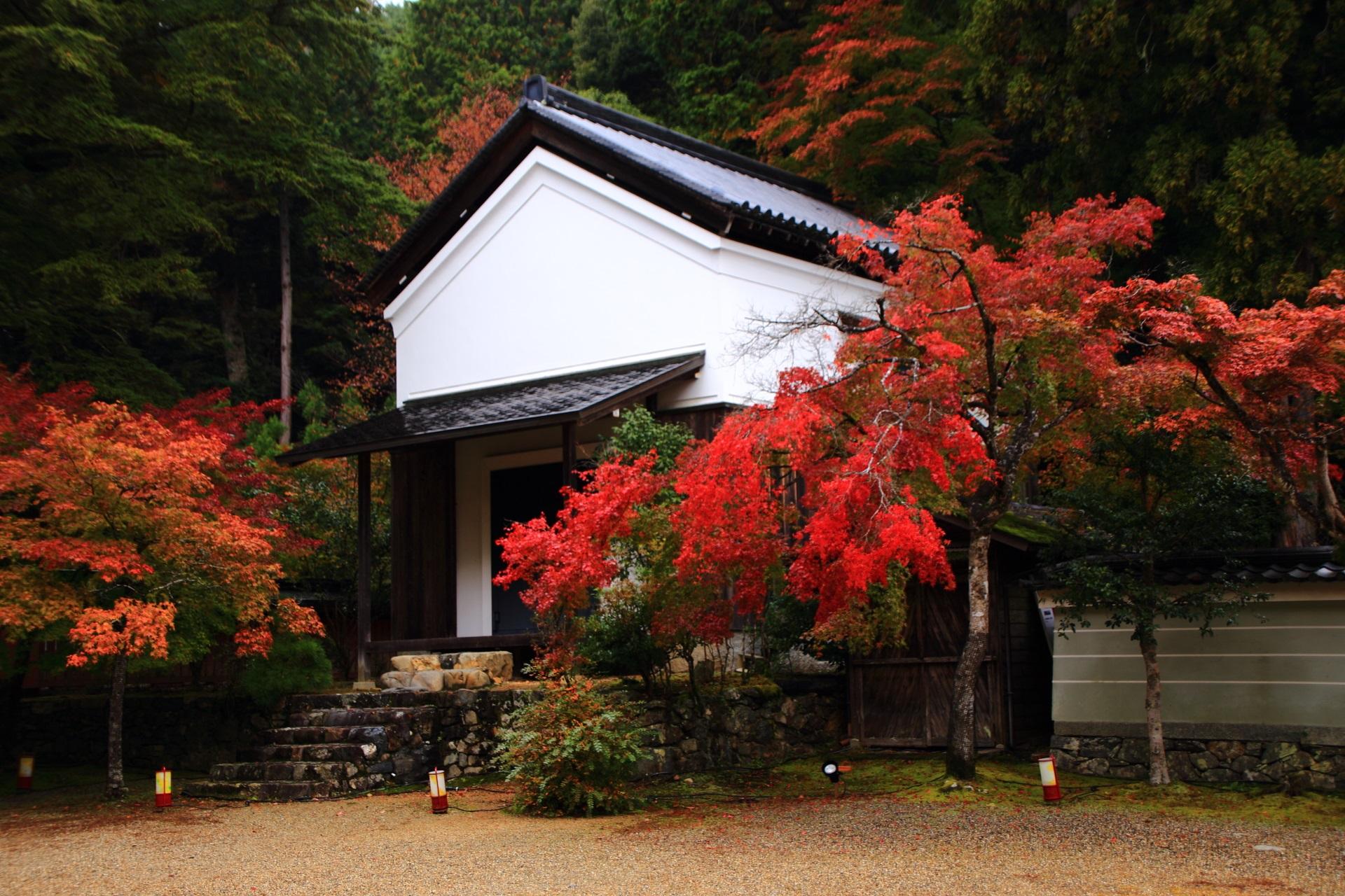 神護寺の宝蔵と白壁に映える赤い紅葉