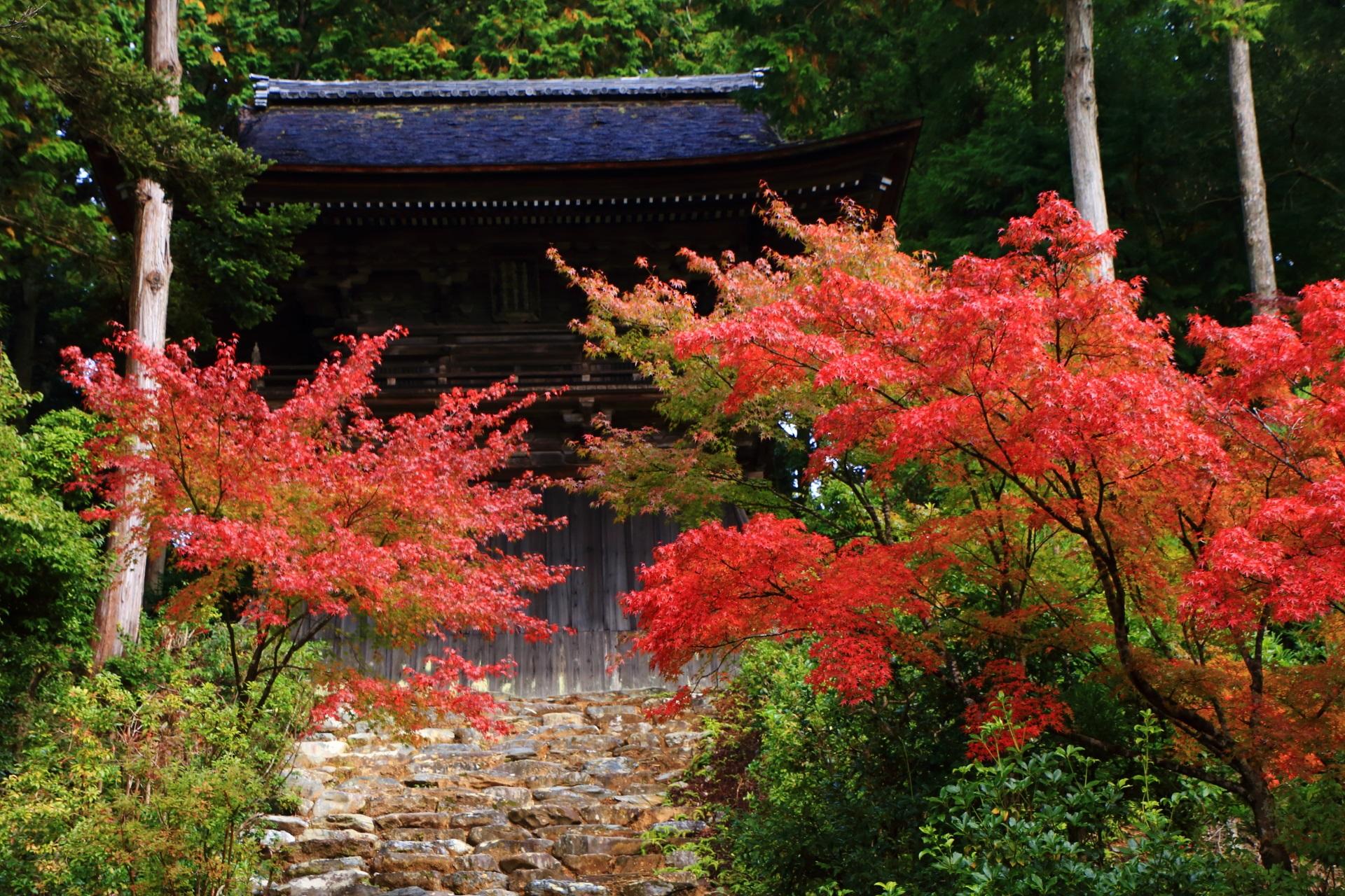 神護寺の鐘楼と朱色の明るい紅葉