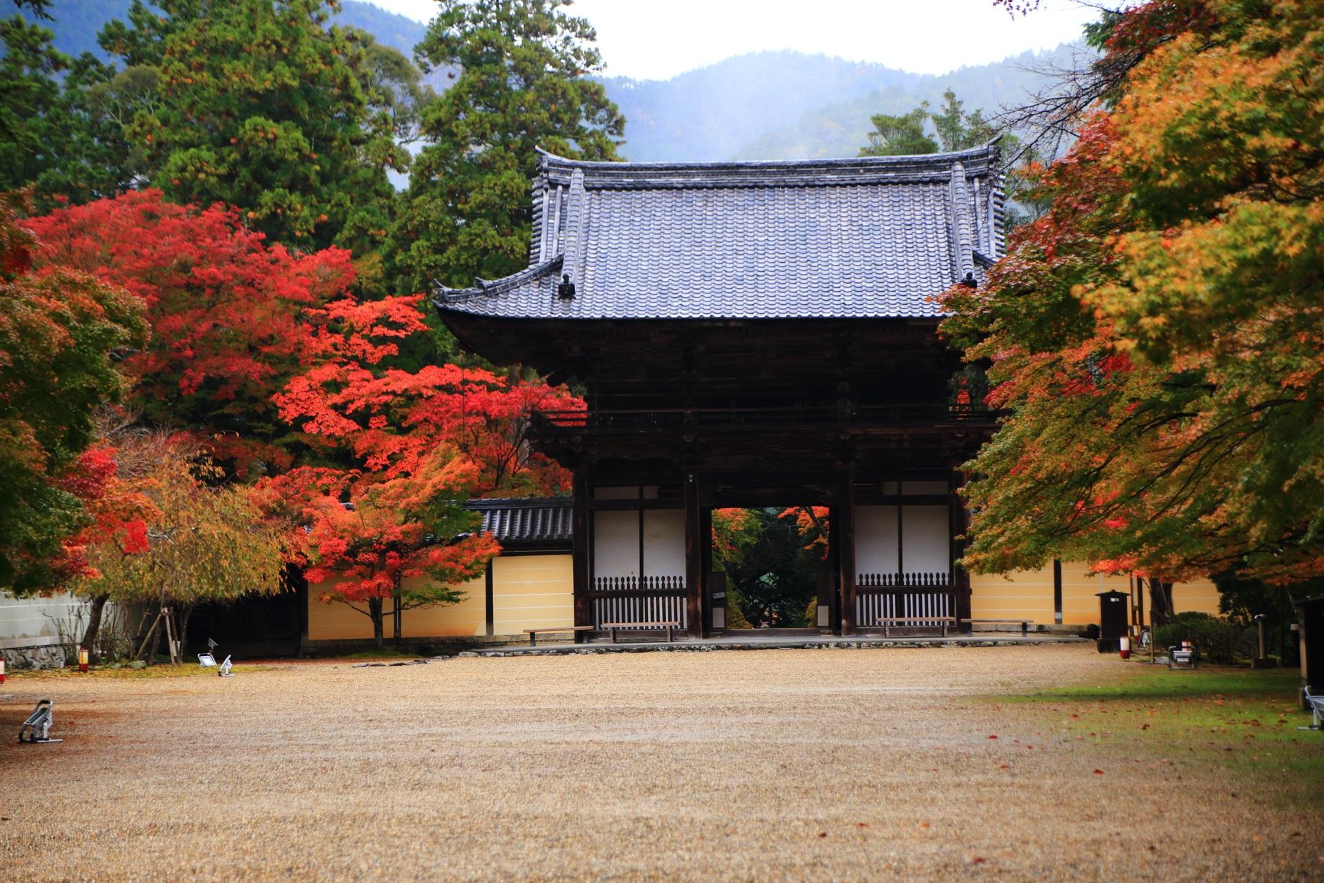 境内から眺めた楼門と紅葉