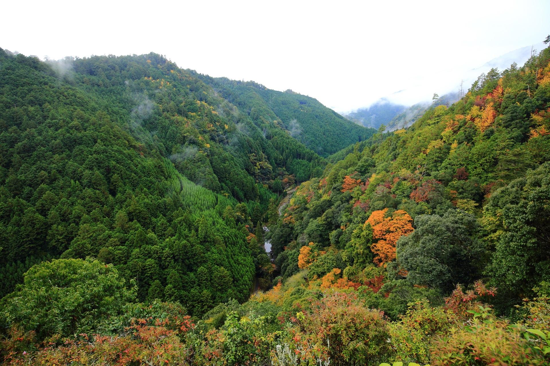 見事な渓谷である錦雲渓