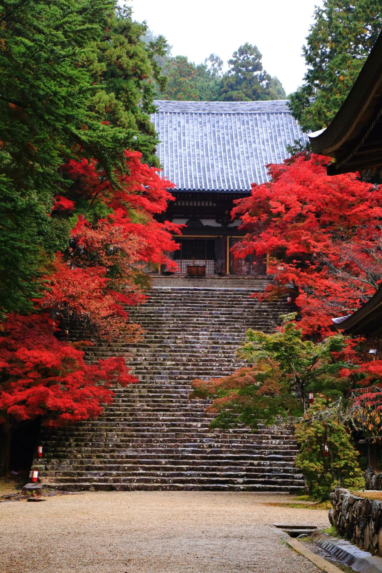 神護寺の金堂と石段の紅葉