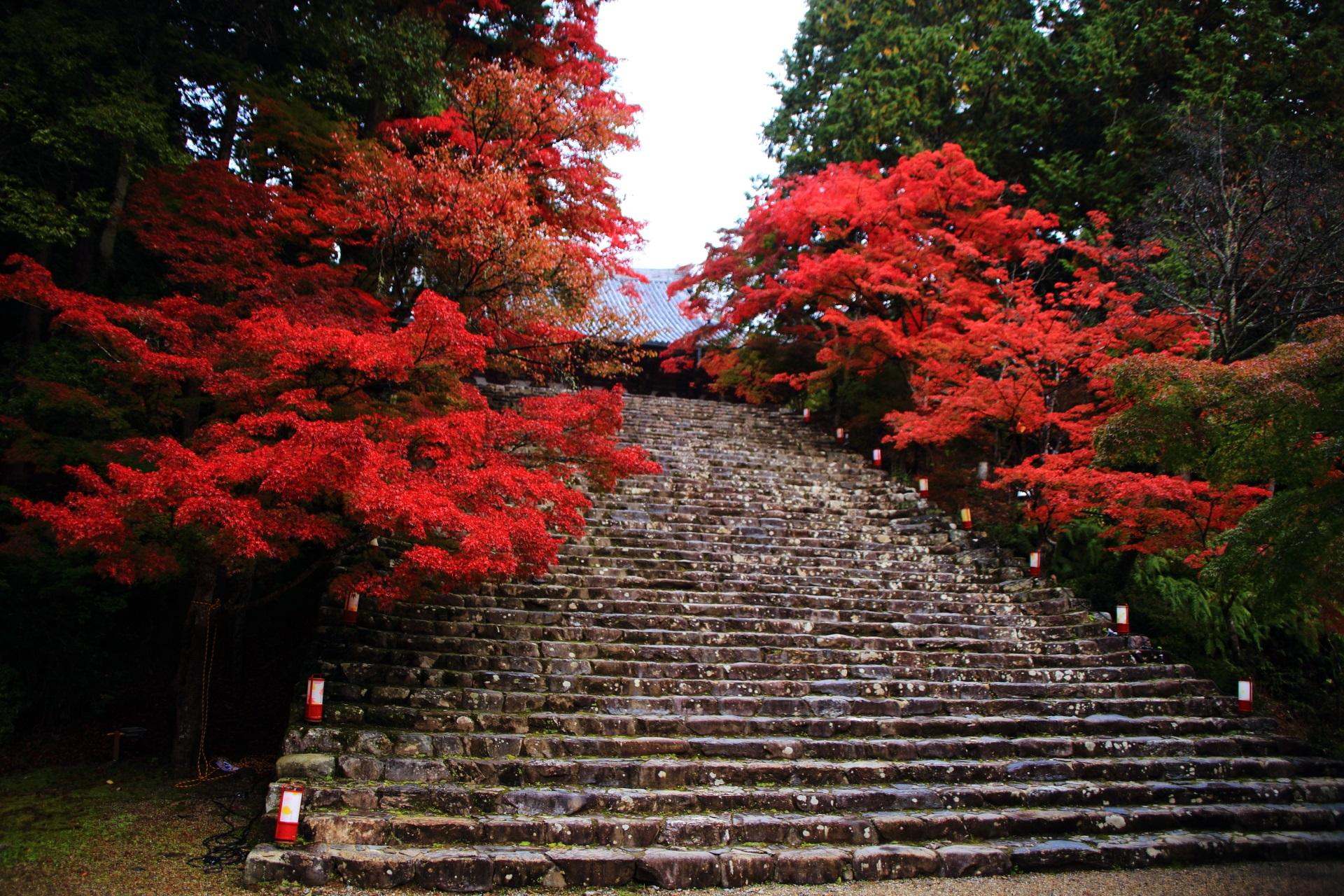 神護寺の趣きある絶品の紅葉
