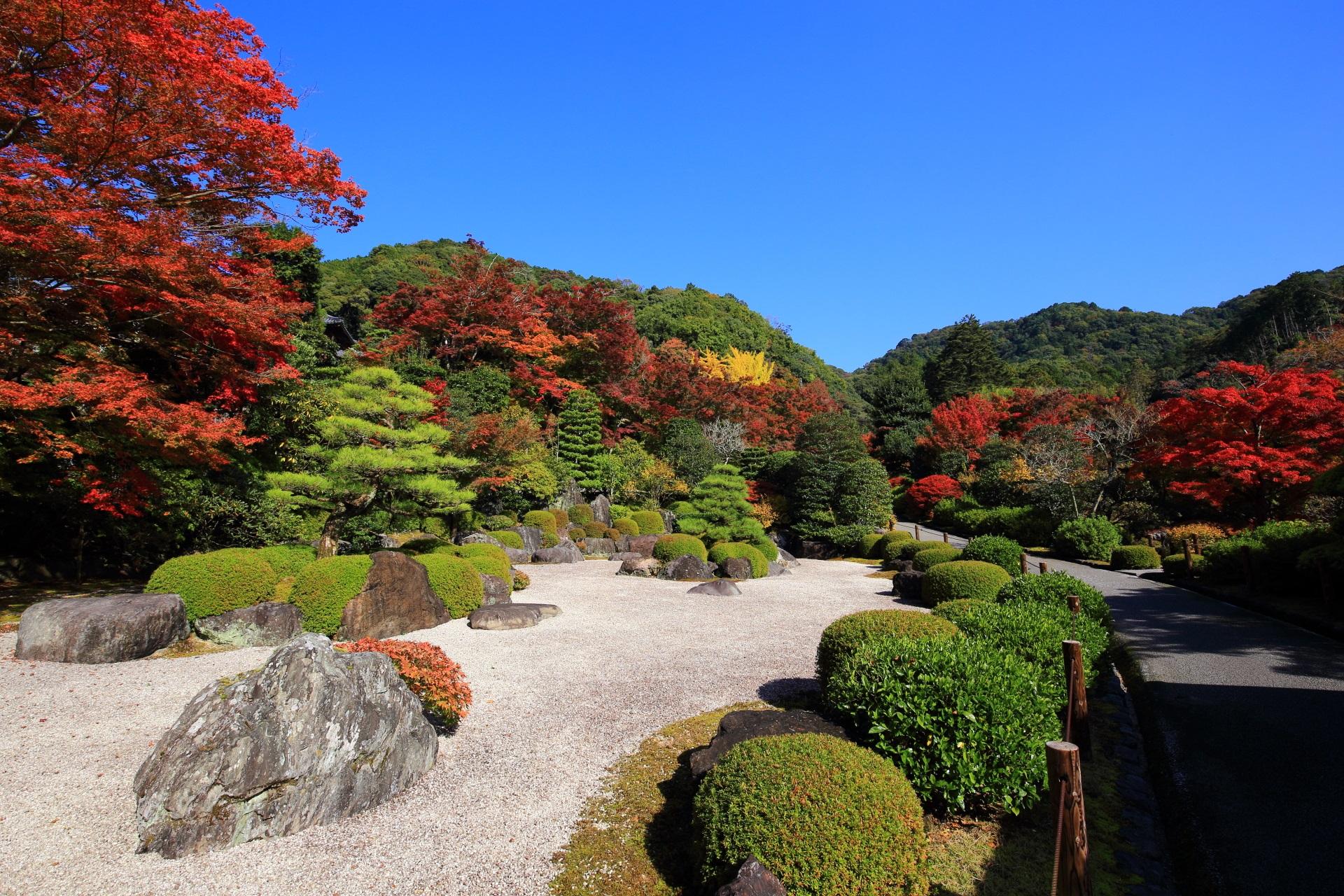 三室戸寺の枯山水庭園の紅葉