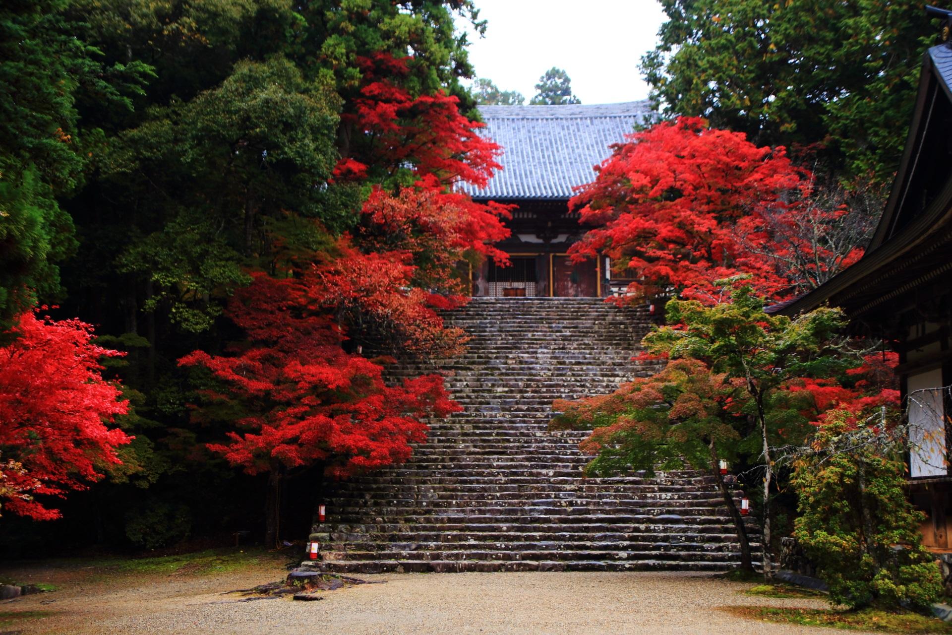 金堂と石段を彩る炎のような紅葉