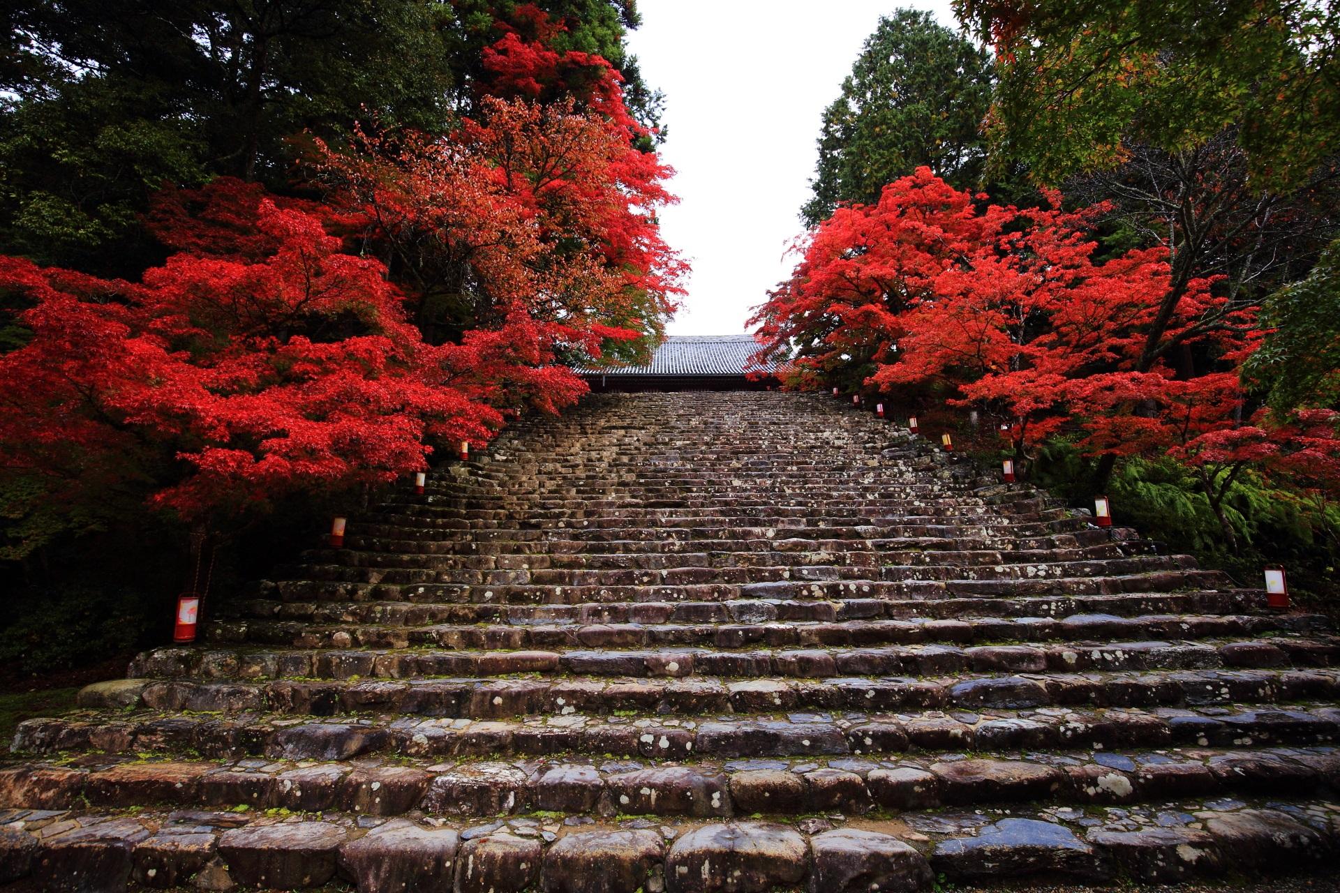 高画質 神護寺 紅葉 写真