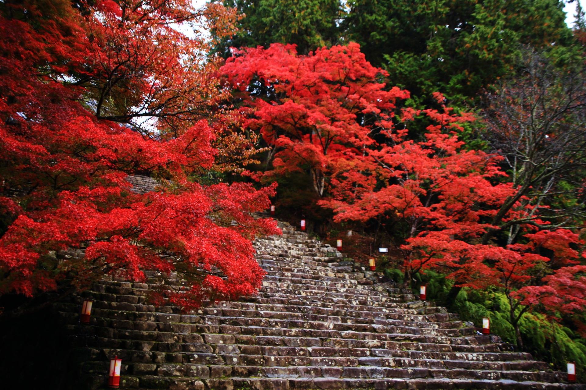 神護寺の溢れる艶やかな秋色