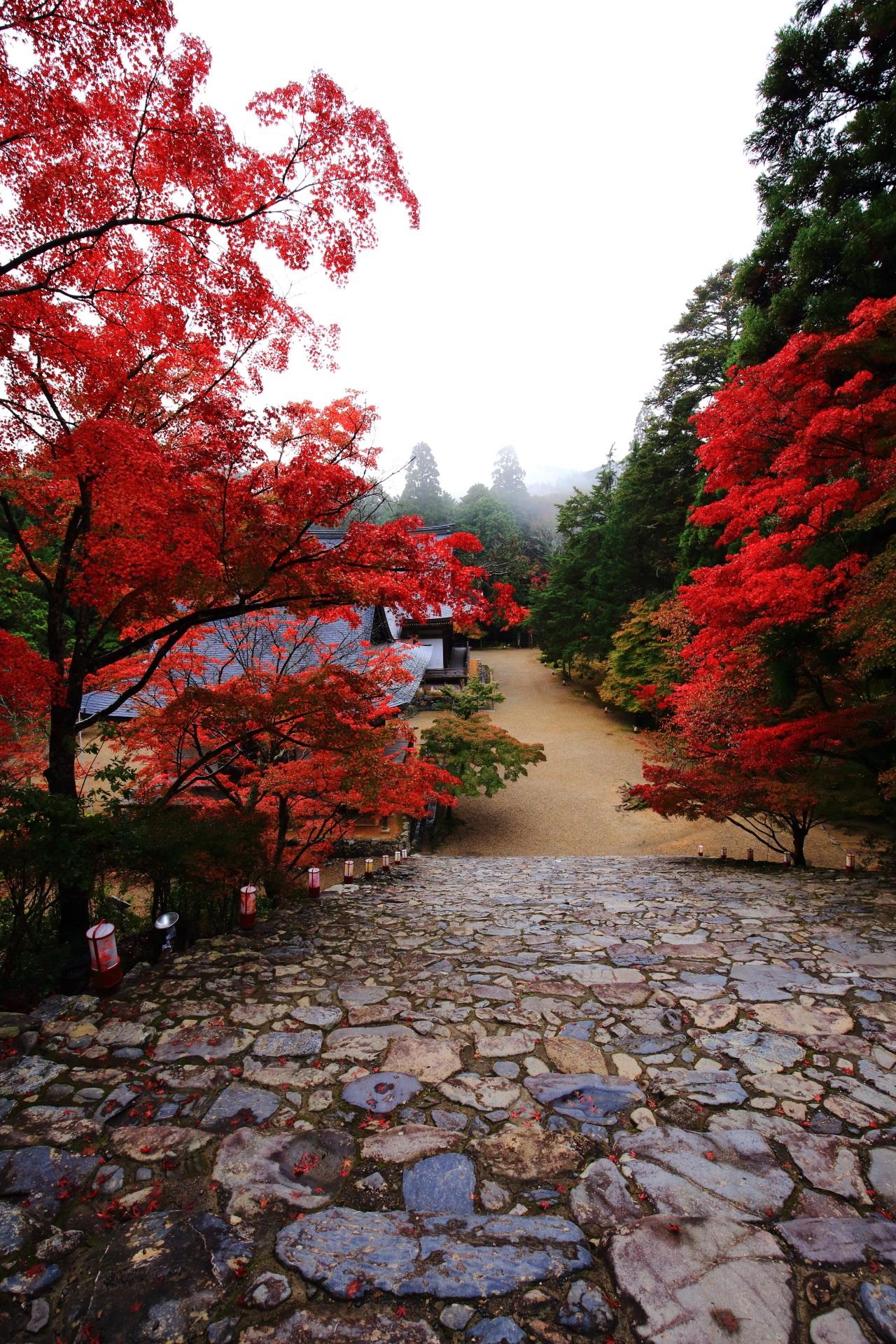 神護寺 紅葉 高画質 写真