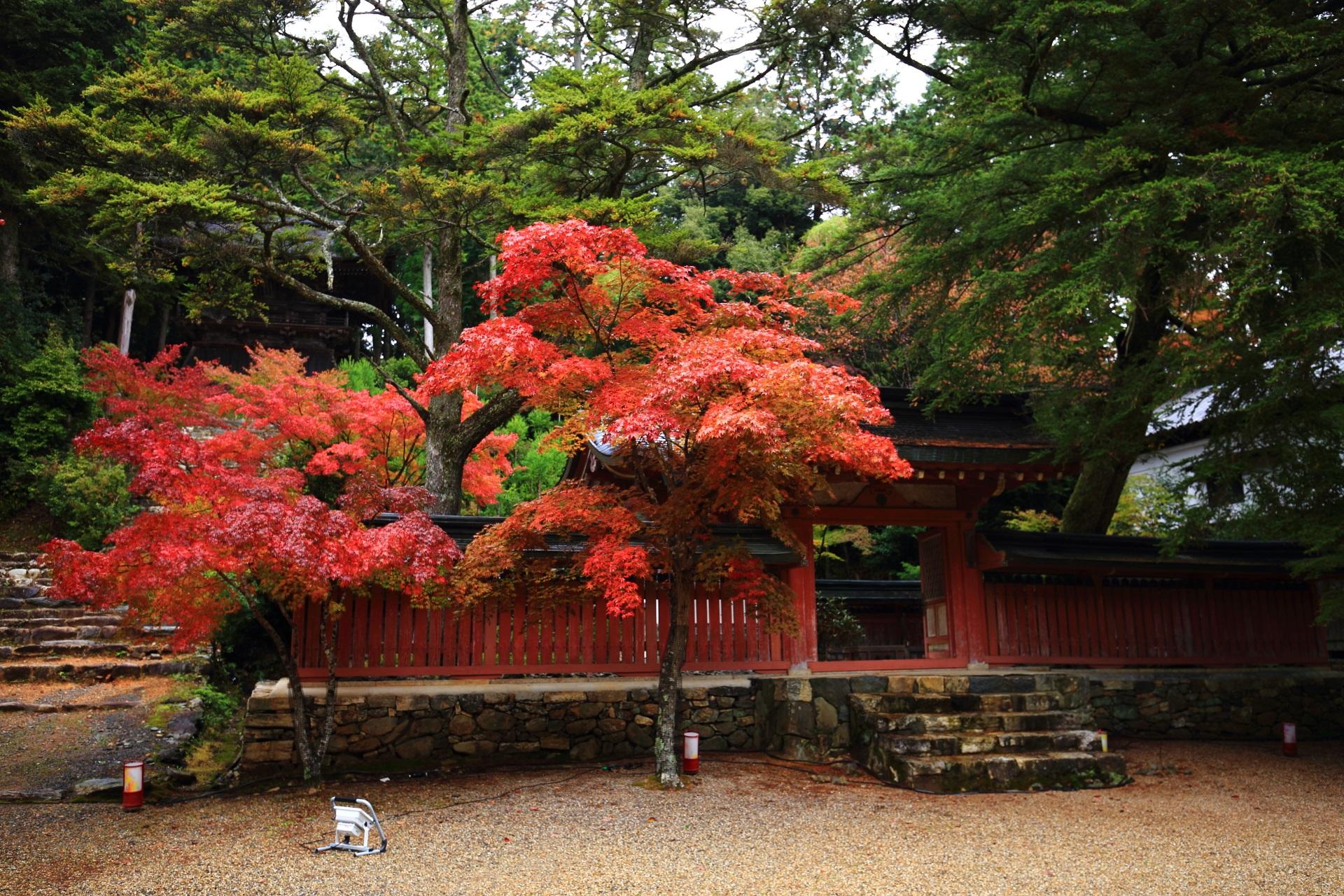 神護寺の和気清麻呂公霊廟と鮮やかな色合いの紅葉