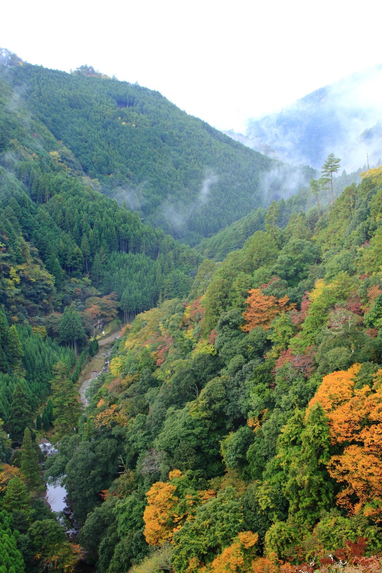 神護寺の素晴らしい紅葉と秋の情景