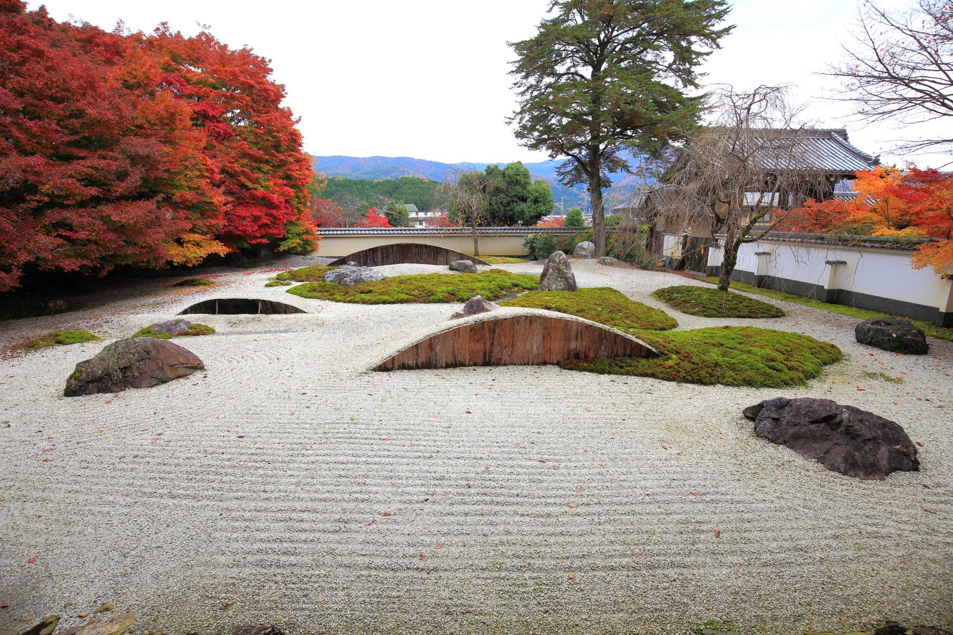 実相院門跡の素晴らしい紅葉と散りもみじや秋色の情景