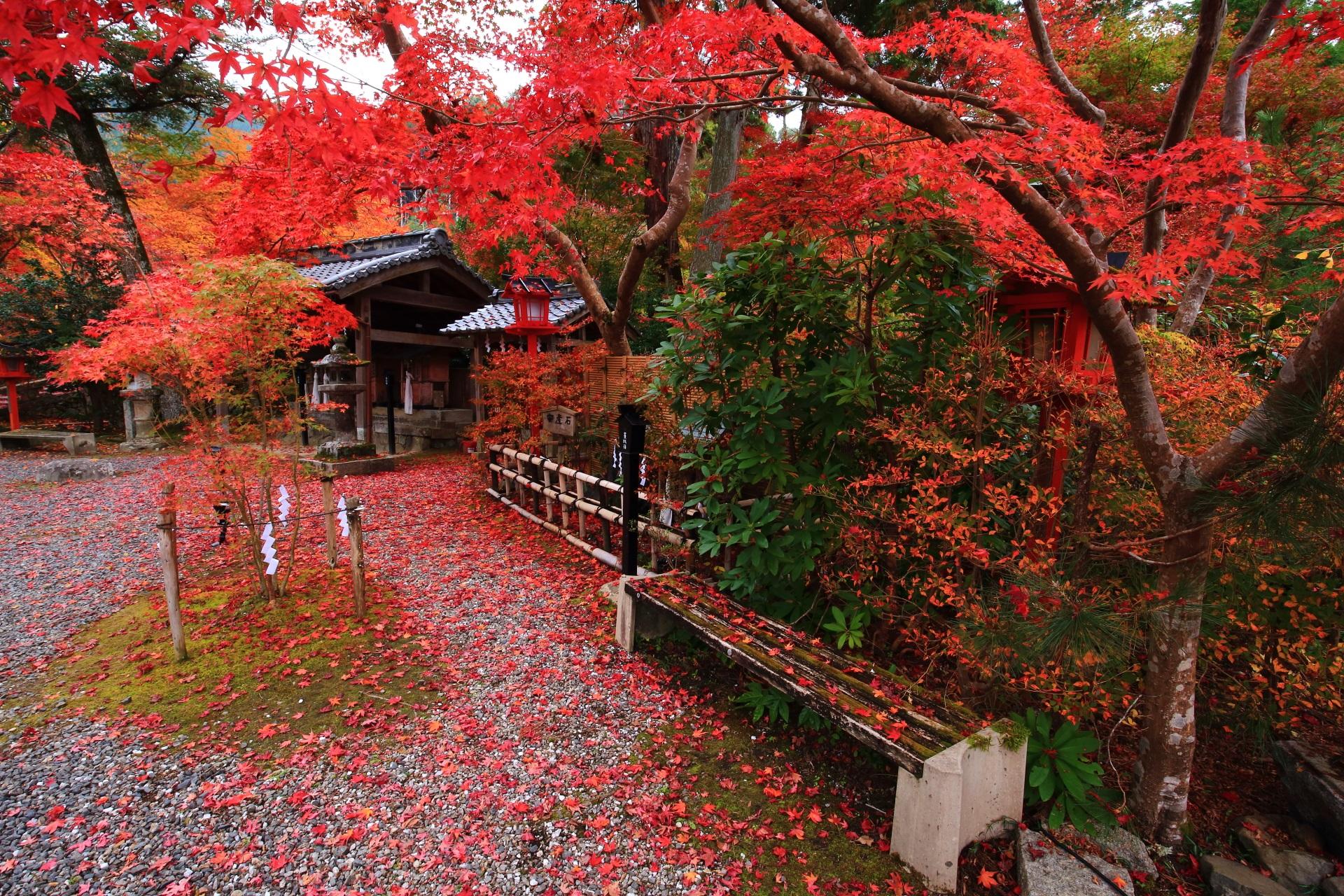 2018年の京都の紅葉