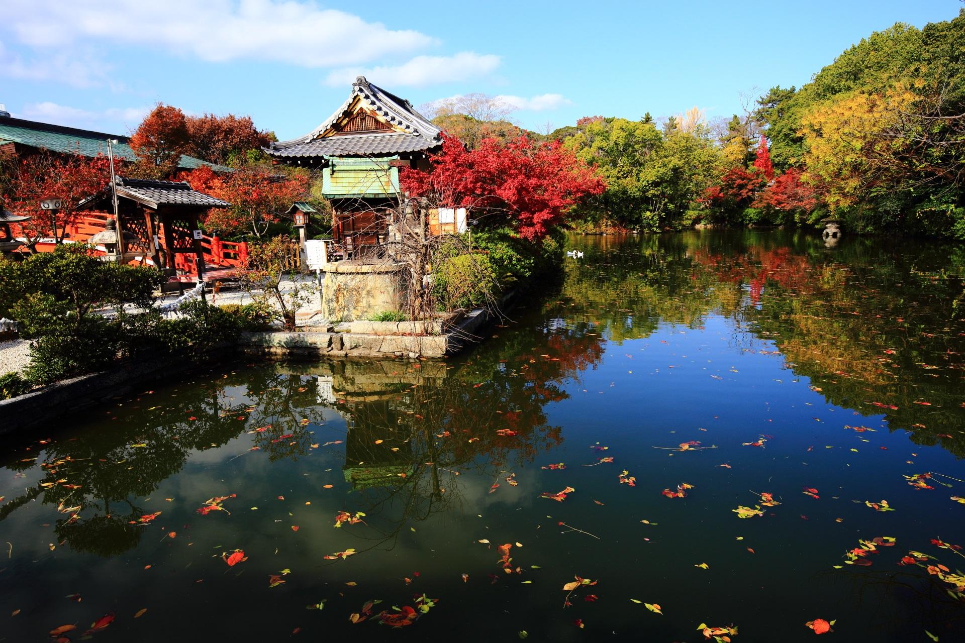 神泉苑 紅葉 洛中の鮮やかな紅葉と秋色の水鏡