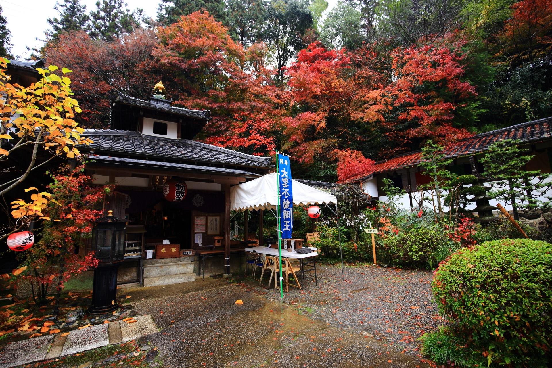 双林院 紅葉 毘沙門堂のそばに佇む秋の山科聖天