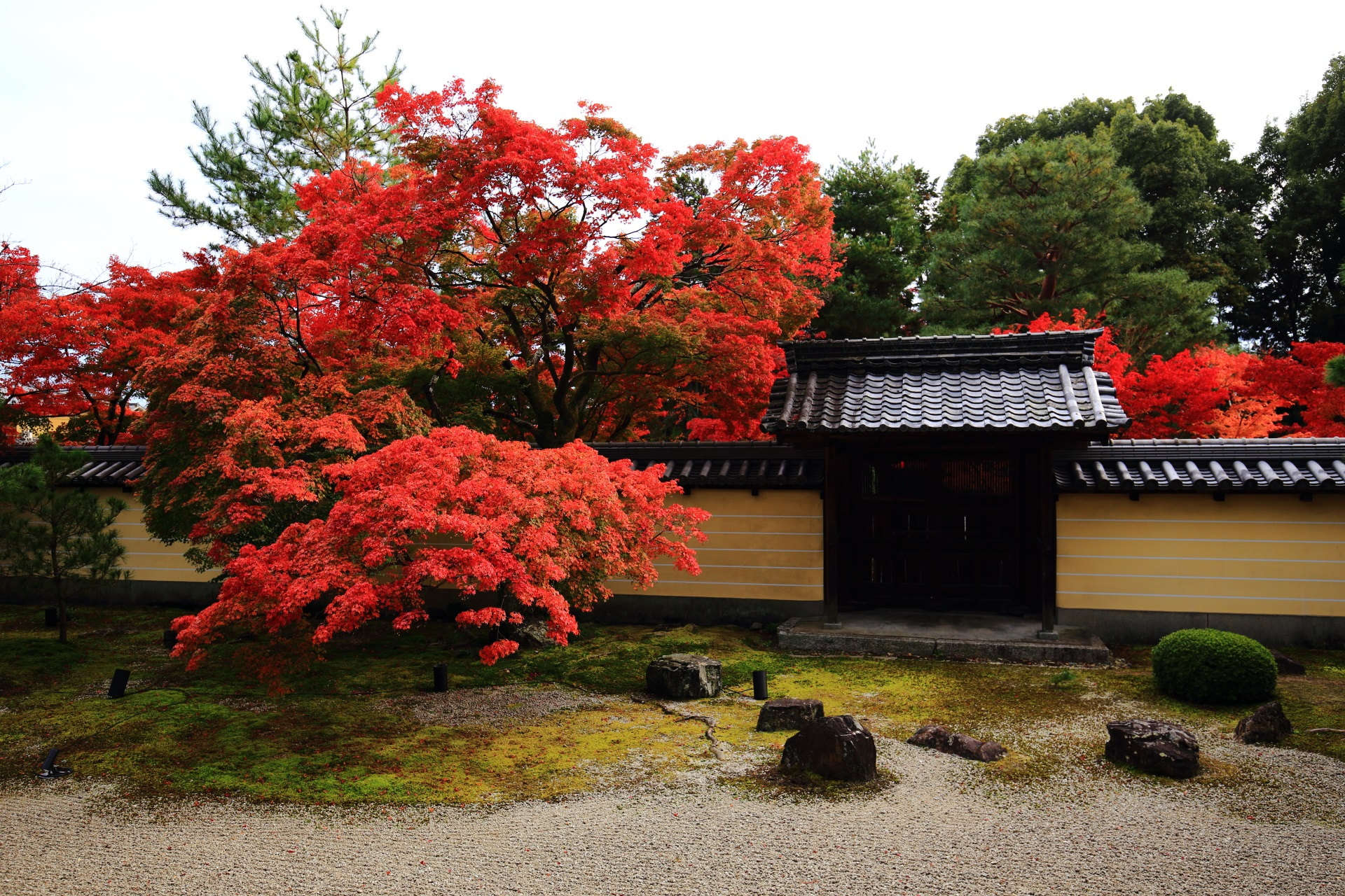 艶やかな秋色に染まる静かな名所