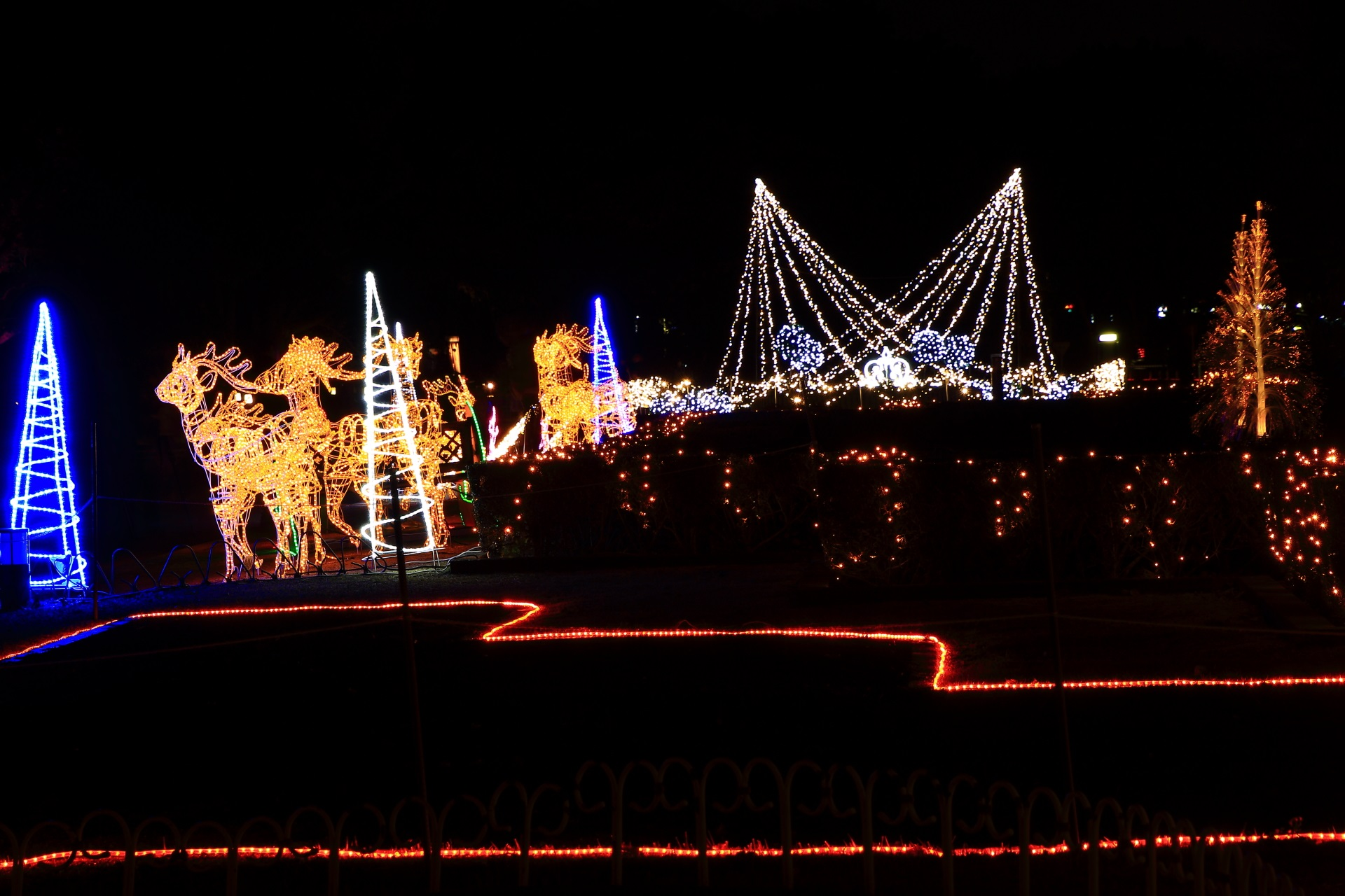 Kyoto Prefectural Botanical Garden illumination