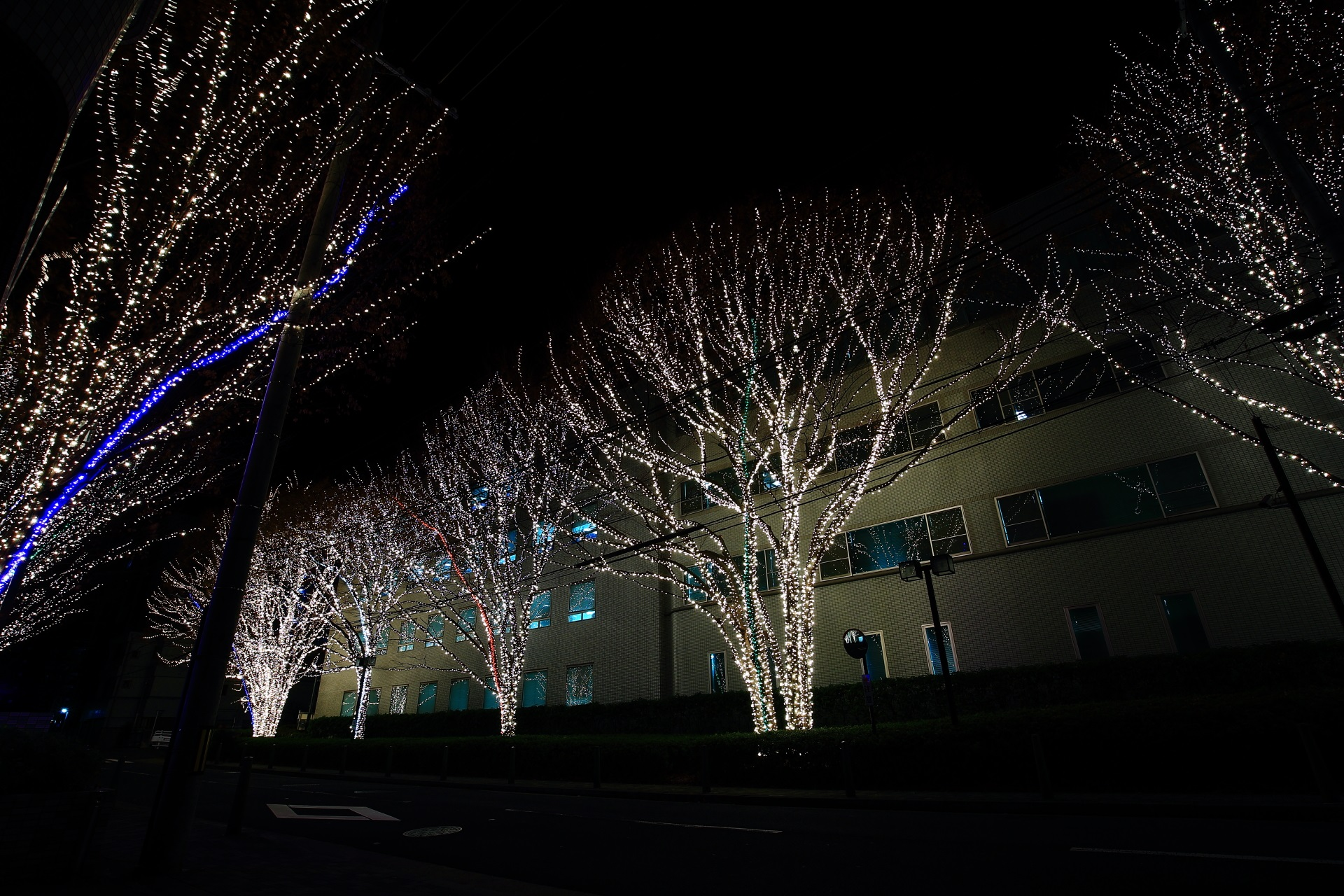 Kyoto illumination by ROHM Semiconductor