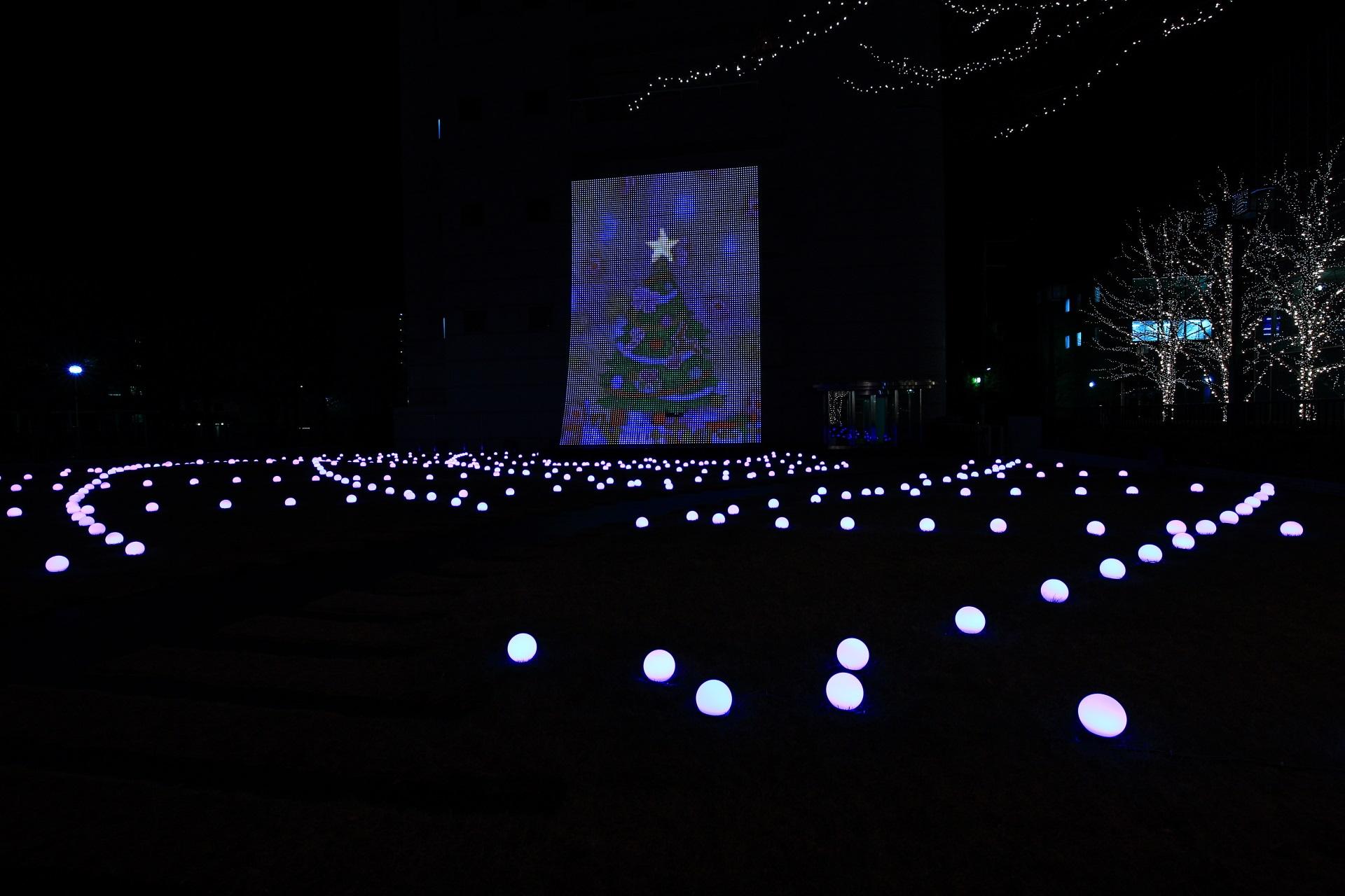 ロームイルミネーション 光のアンサンブル 芝生広場