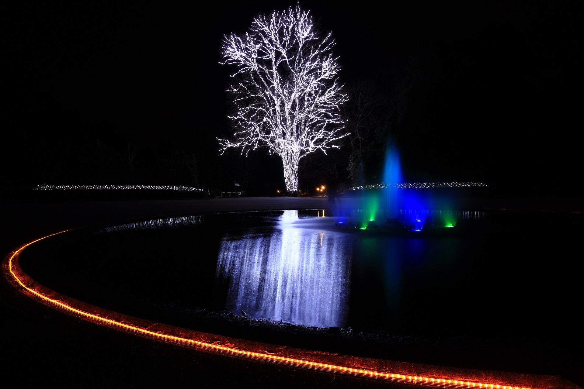 噴水に色の光が当てられるイルミネーション