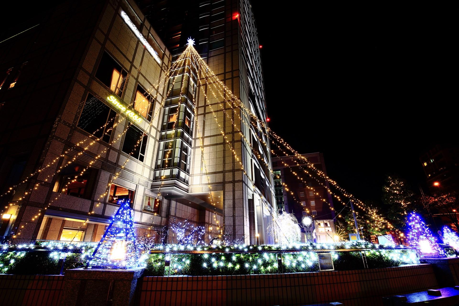 京都ホテルオークラ イルミネーション 街中に浮かび上がる幻想的な光